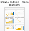 Financial and Non-Financial Highlights